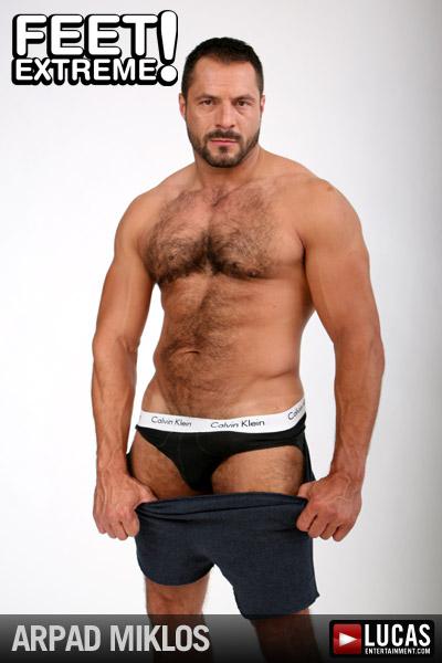 Arpad Miklos - Gay Model - Lucas Entertainment