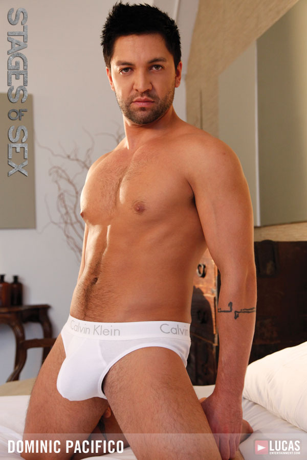 Dominic Pacifico - Gay Model - Lucas Entertainment