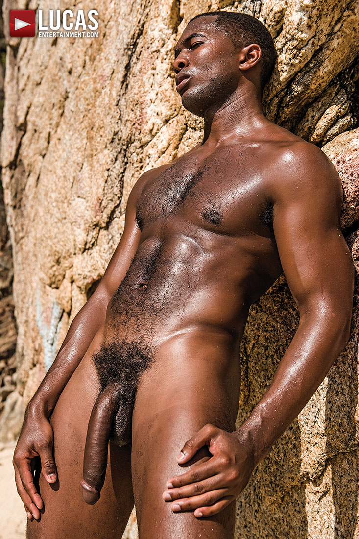Remarkable Hot sexy nude black men