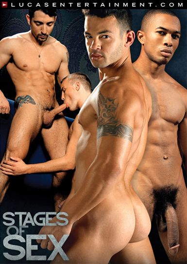 Stages of Sex - Front Cover