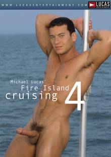 fire-island-cruising-4