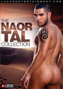 the-naor-tal-collection