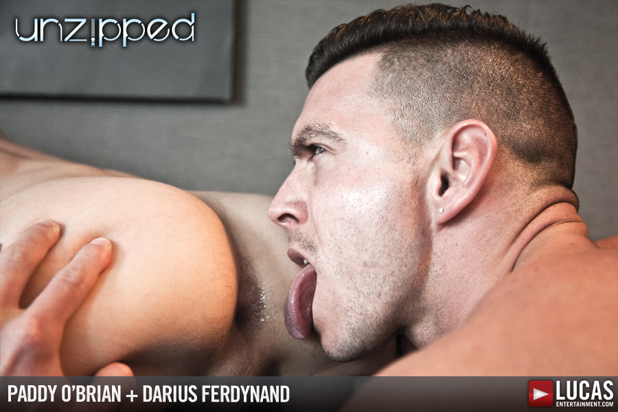 Darius Ferdynand Bottoms for Paddy O