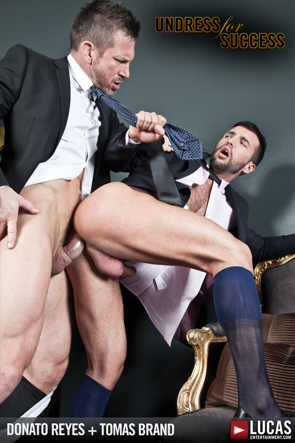 Gentlemen 07: Undress for Success - Gay Movies - Lucas Entertainment