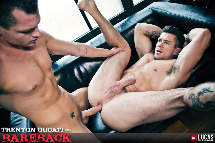 Trenton Ducati Goes Bareback - Gay Movies - Lucas Entertainment