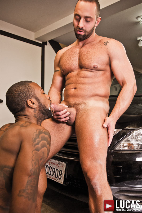 Hot Rod and Fabio Stallone Sneak Away for Some Bareback Fun - Gay Movies - Lucas Entertainment