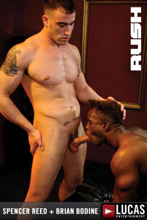 Rush - Gay Movies - Lucas Entertainment