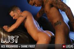 Lust - Gay Movies - Lucas Entertainment