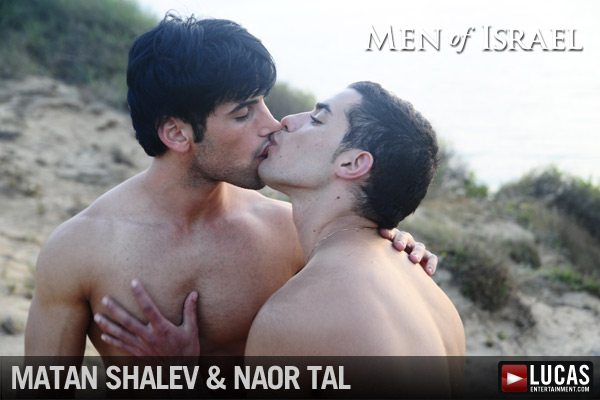 The Naor Tal Collection - Gay Movies - Lucas Entertainment