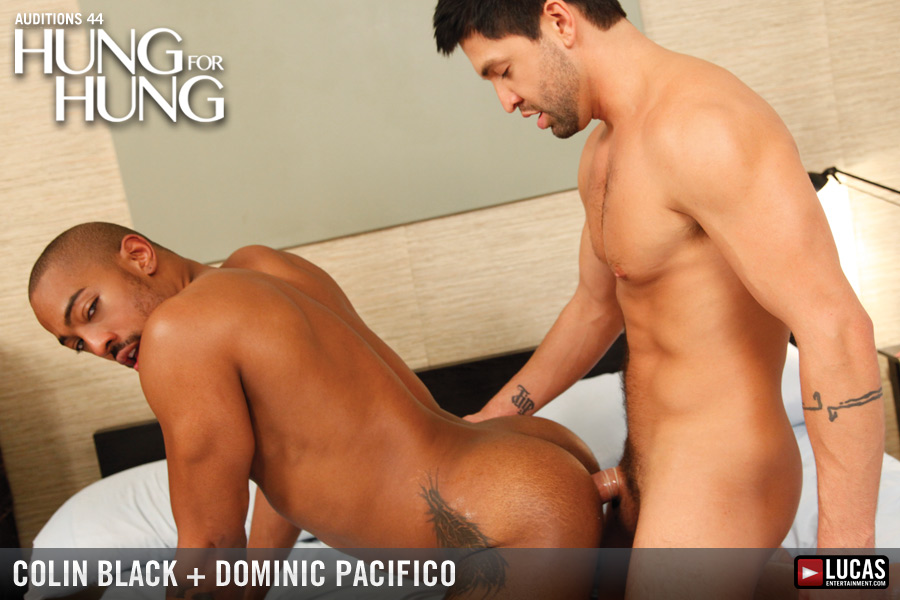 Auditions 44: Hung for Hung - Gay Movies - Lucas Entertainment