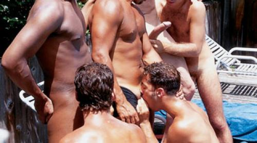 Fire Island Group Breeding Gay Porn