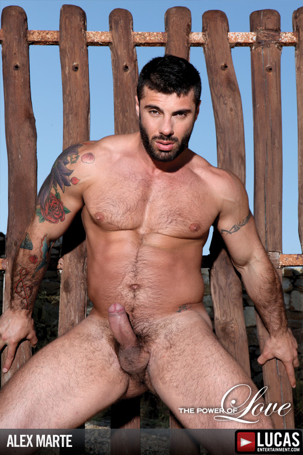 Alex Marte - Gay Model - Lucas Entertainment