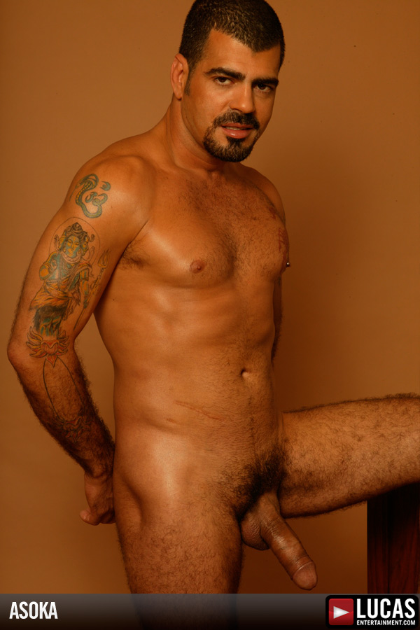 Asoka - Gay Model - Lucas Entertainment