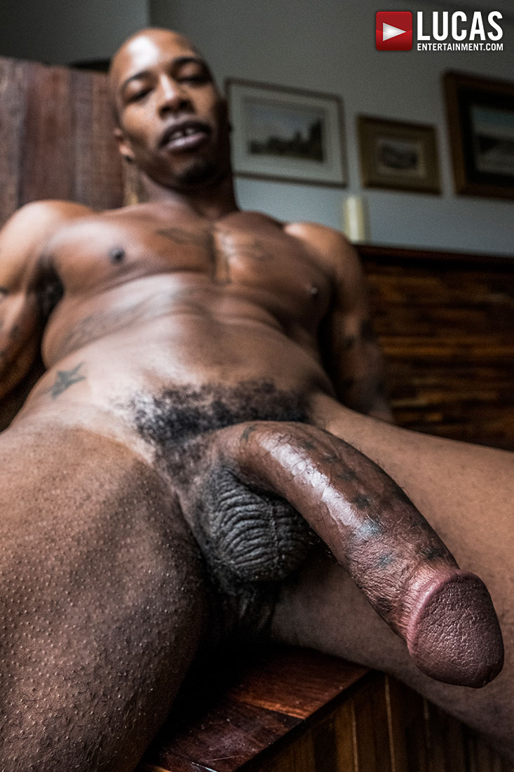 Black dick gay video-7243