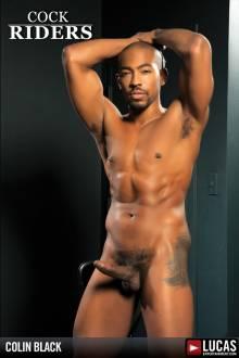 Colin Black - Gay Model - Lucas Entertainment