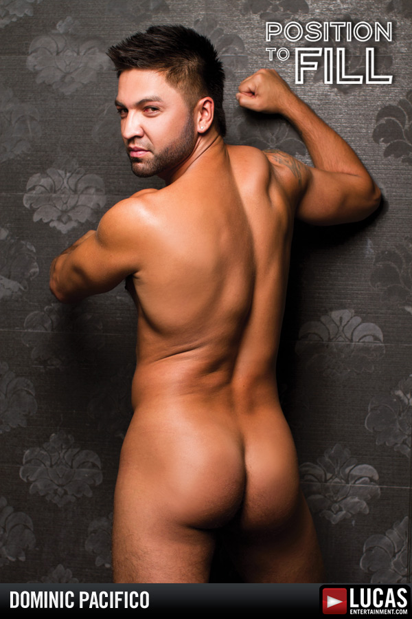 Dominic Pacifico gay Porr