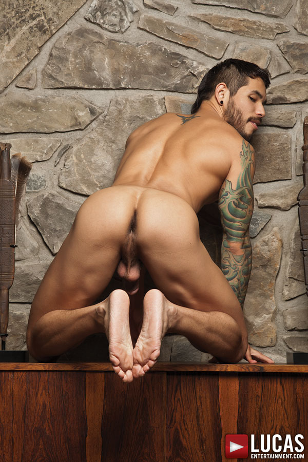 Magic Wood And Draven Torres