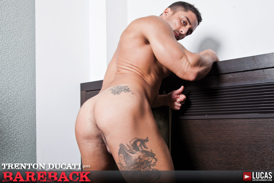 Robin Sanchez - Gay Model - Lucas Entertainment