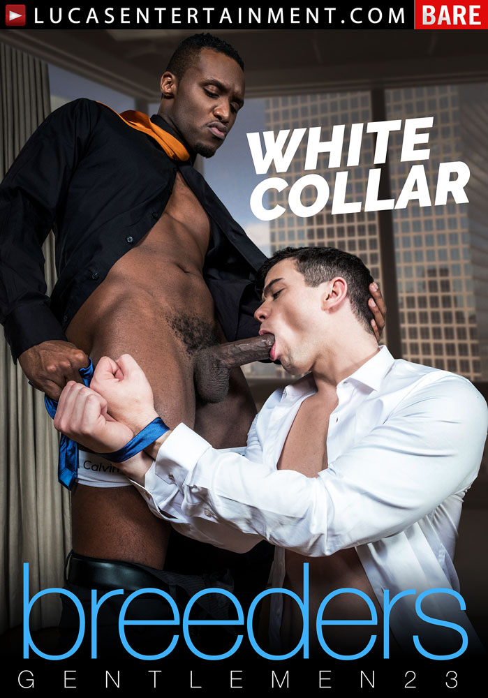 Gentlemen 23: White Collar Breeders - Front Cover