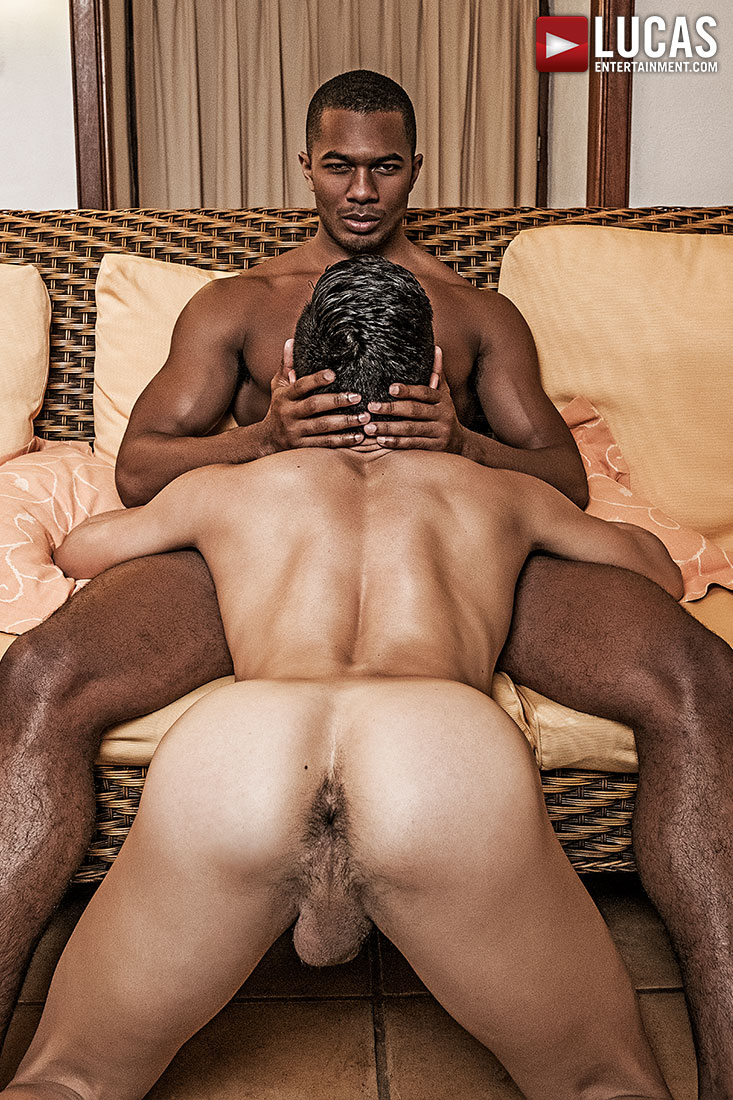 Movies of black dicks in the shower gay