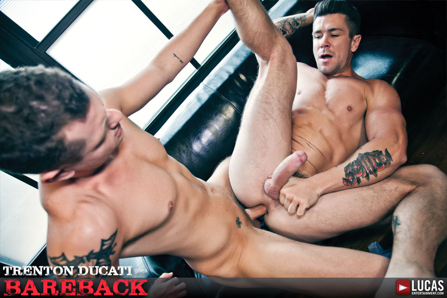 Trenton Ducati Bottoms Bareback With Blue Bailey For The First Time Ever - Gay Movies - Lucas Entertainment