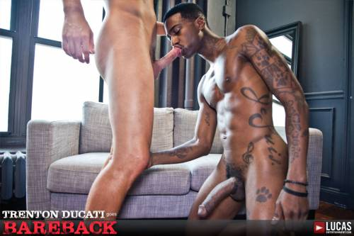Trenton Ducati Has Bareback Sex For The First Time On Camera With Blue Bailey - Gay Movies - Lucas Entertainment