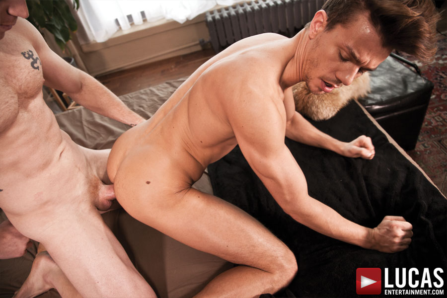 Seth Roberts Takes a Bareback Pounding from Saxton West - Gay Movies - Lucas Entertainment