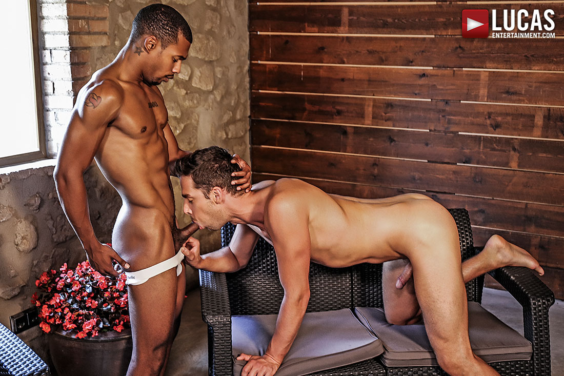 Jacen Zhu Bottoms For Damon Heart - Gay Movies - Lucas Entertainment