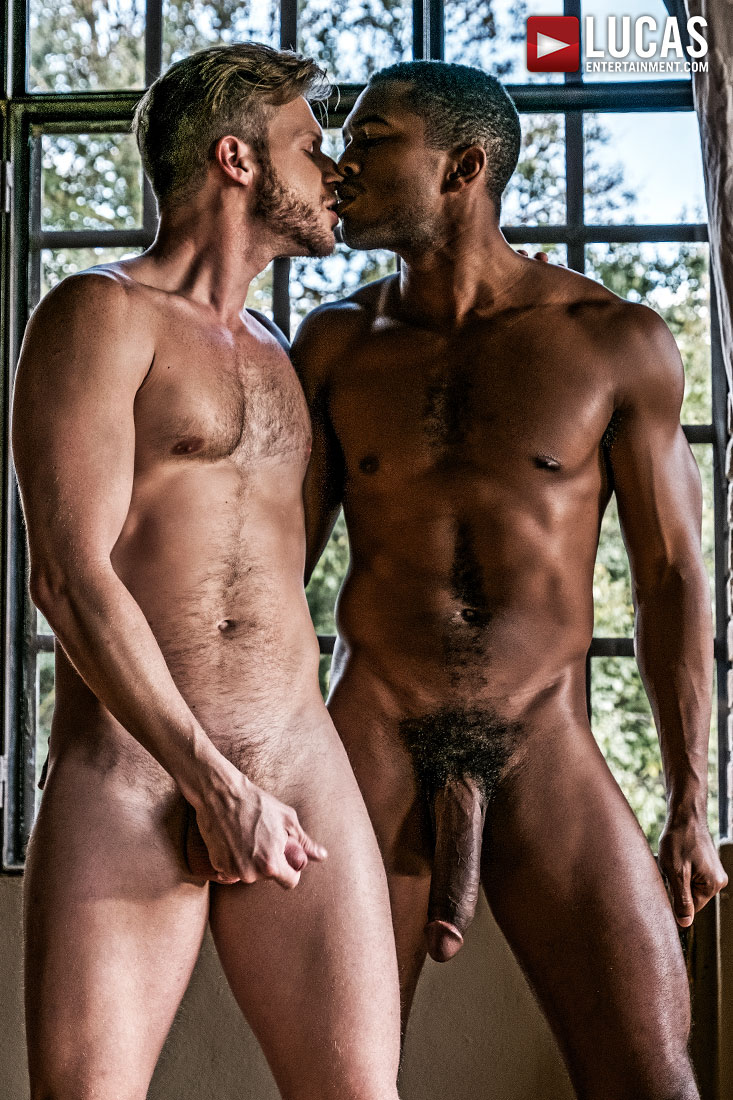 Breeding Prince Charming - Gay Movies - Lucas Entertainment