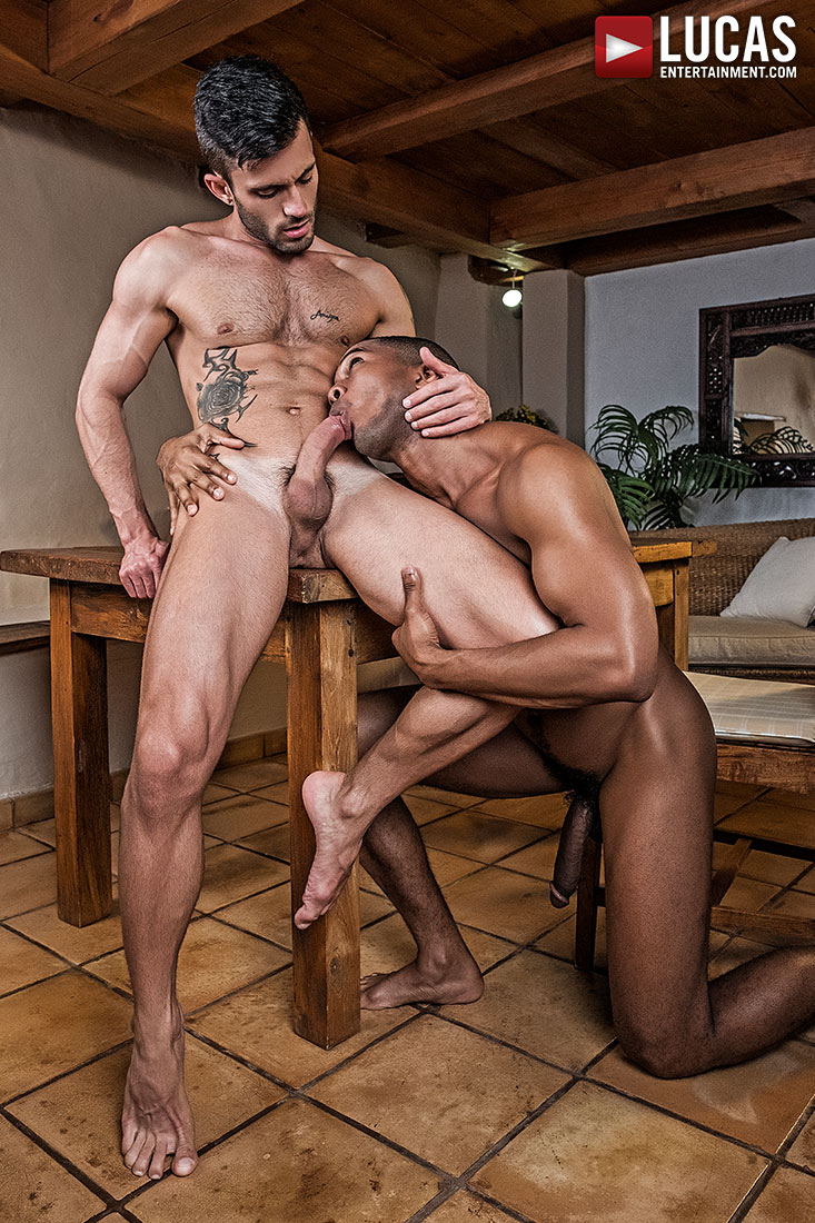 Sean Xavier And Andy Star Celebrate A Bareback Cinco De Mayo - Gay Movies - Lucas Entertainment