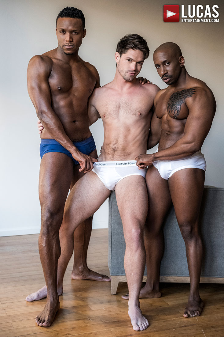 Black Cocks Rule - Gay Movies - Lucas Entertainment