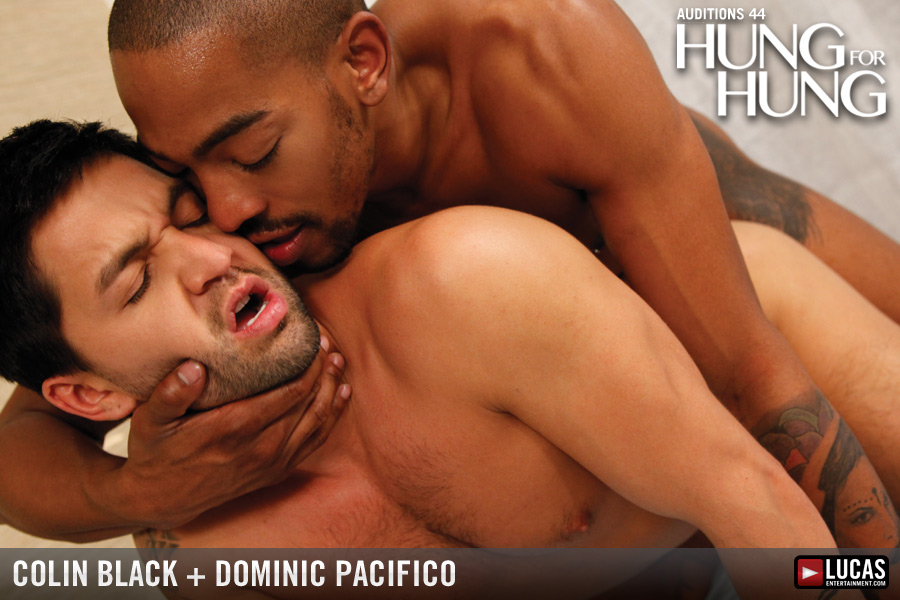 Colin Black and Dominic Pacifico Flip-Fuck - Gay Movies - Lucas Entertainment