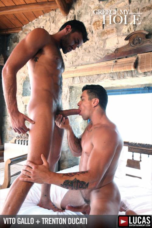Greek Gods Vito Gallo and Trenton Ducati Flip-Fuck - Gay Movies - Lucas Entertainment