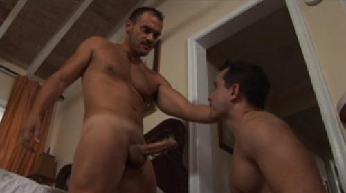gay porn brown Anton