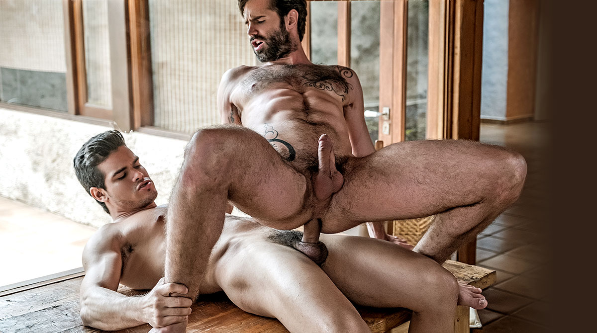 Bareback gays loves to fuck hardcore 2
