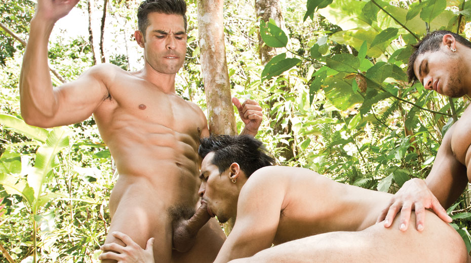 Lustful gay guys safe outdoor fuck