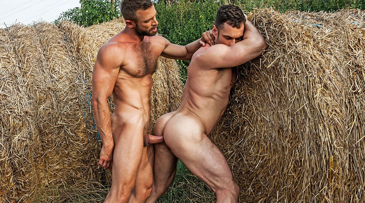Haystack sex