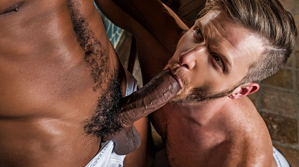 muscled white blonde men gay porn