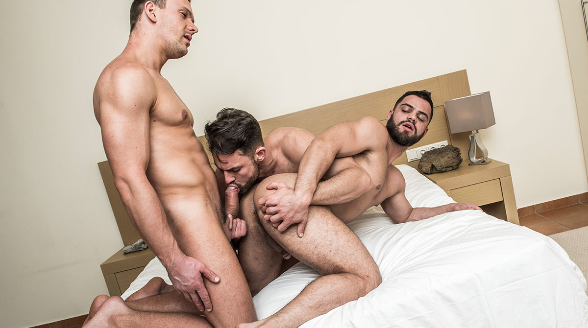 Torrie wilson nude playboy photos
